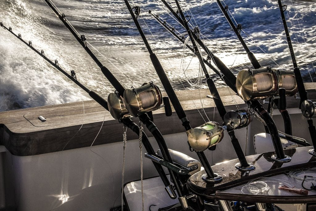 Tournament fishing from pastime to pro for Online fishing tournament