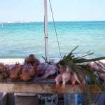 Tips for Anchoring in The Bahamas near Fort Montagu