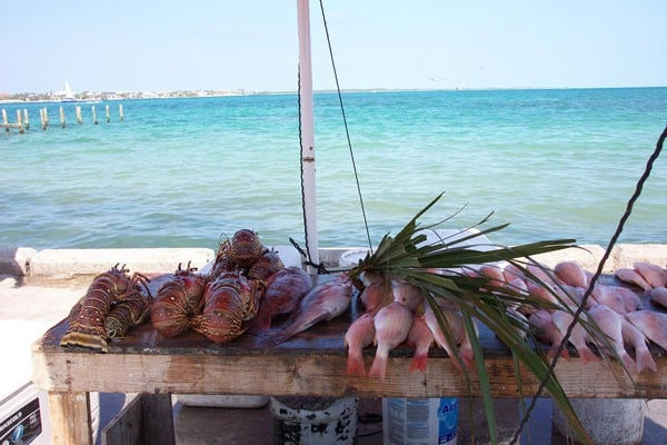 Hold on tips for anchoring in the bahamas southern boating for Bahamas fish market