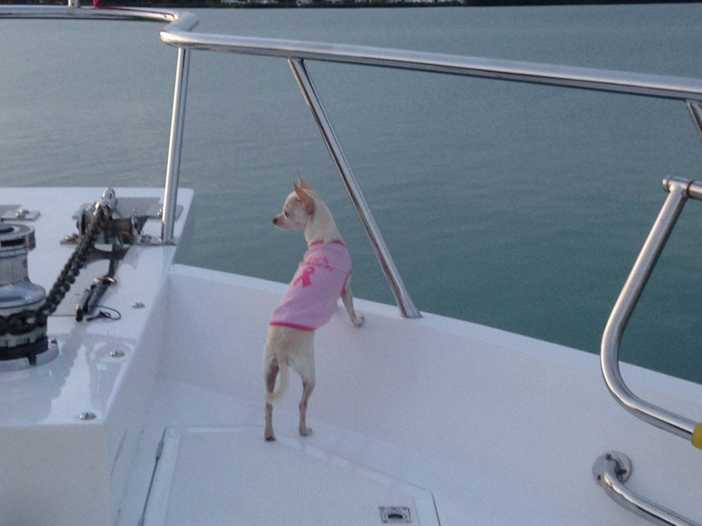 Zoe on the 61 ft. Family Business