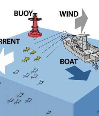 New technology aids sportfish captains