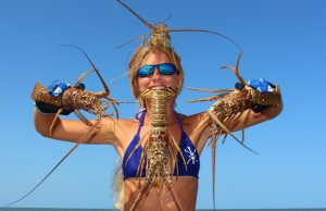 An image of a woman hold four lobsters Lobster Mini Season