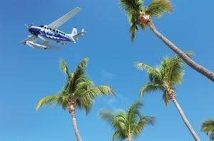 Tropic Ocean palms_preview