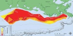 dead zones, dead zone, eutrophrication, algae, lack of oxygen, decompose, algae bloom, oxygen
