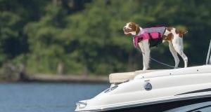 Donate a Boat, boat donations, boat donations in Maryland, donations, boat donations