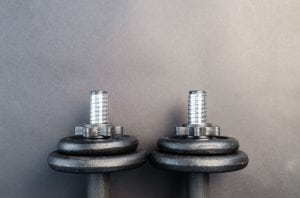 An image of free weights