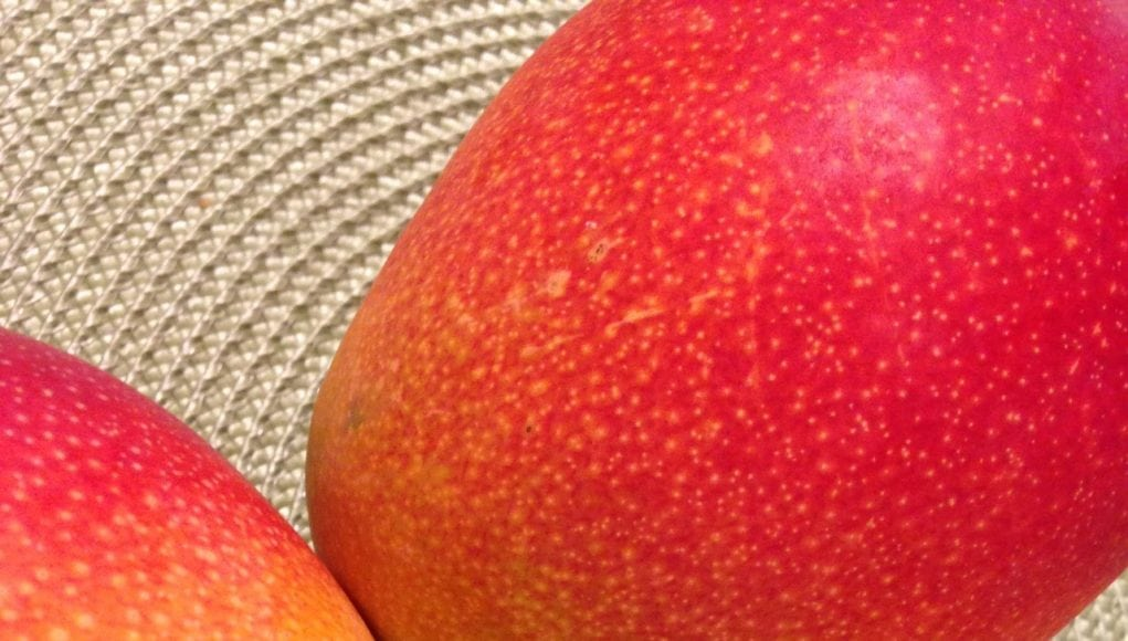 an image of mangos for Mango Salsa