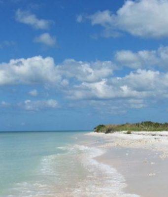 an image of Hog Island
