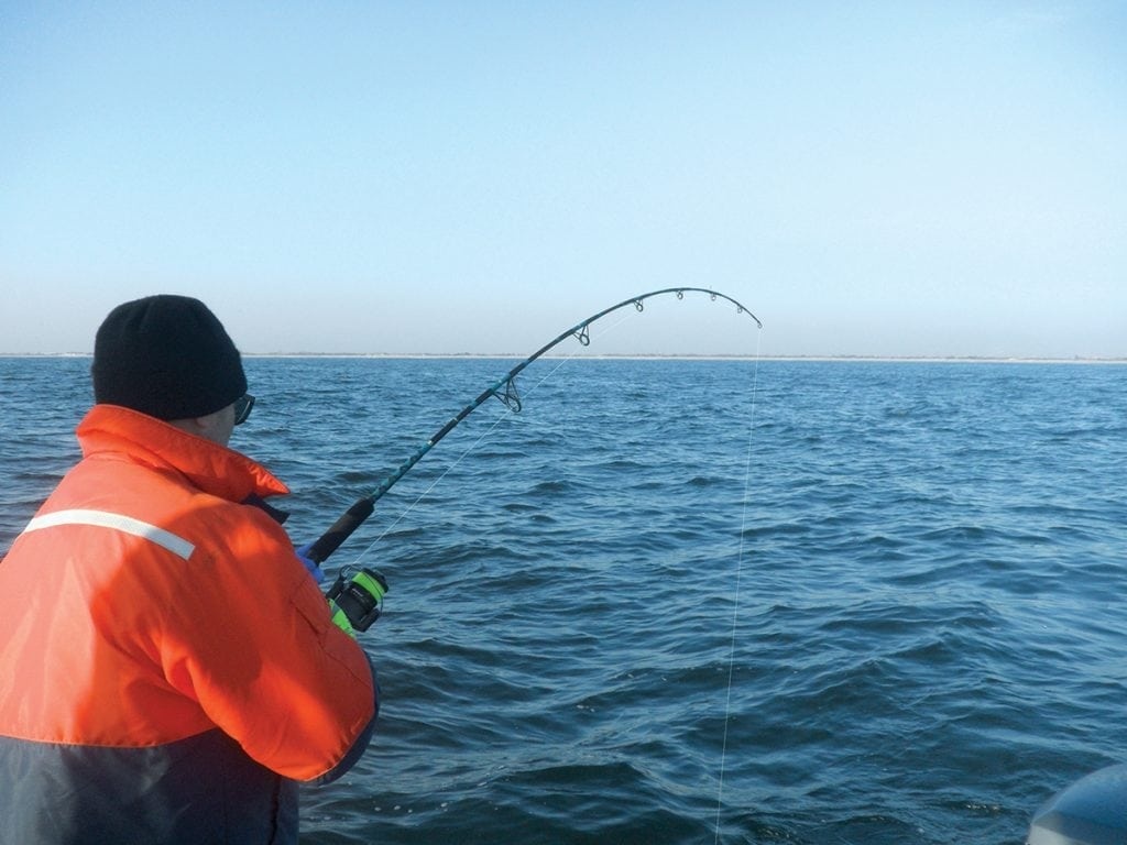 An image of a man Bass Fishing in Long Island
