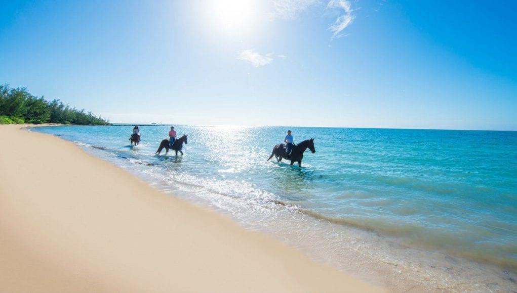 an image of Horseback Riding in The Bahamas