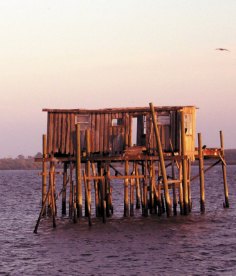 Cedar Key on the Big Bend