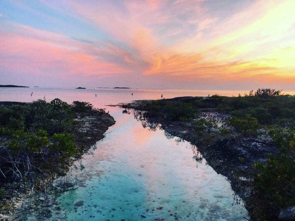 bahamas photo contest winner