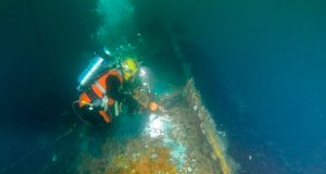 an image if a diver on the coimbra